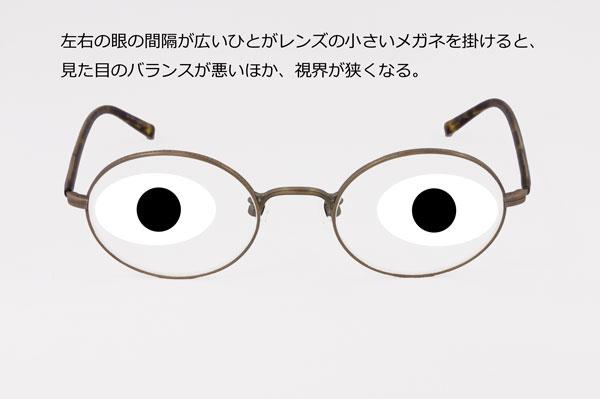 (写真2)左右の眼の間隔が広いひとが、小さなレンズのメガネを掛けたイメージ。