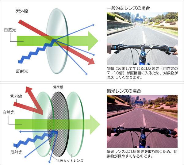 (写真1)「一般的なレンズ」と「偏光レンズ」の仕組みや見え方の違いが図と写真で紹介されている。