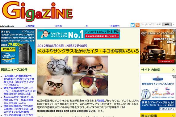 メガネやサングラスをかけたイヌ・ネコの写真いろいろ - GIGAZINE