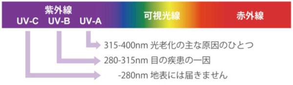 UV-A:315nm~400nmの紫外線。地表に届く紫外線の約95%を占め、肌の表皮を超え、真皮にまで達する。 UV-B:280nm~315nmの紫外線。地表に届く紫外線の約5%を占める。肌の表皮で吸収され、真皮までは到達しないが、UV-Aより強いエネルギーを持つ。 UV-C:280nm未満の紫外線。オゾン層に吸収され、地表には到達しない。 image by メガネトップ