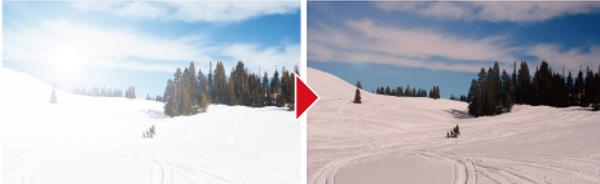 (左)通常のレンズ (右)偏光レンズ